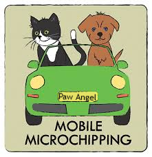 mobile dog cat microchipping we travel to you, microchip puppies, kitten microchipping.,