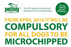 cheap puppy microchipping cannock, walsall, stafford, wolverhampton, birmingham, telford, tamworth, uttoxeter